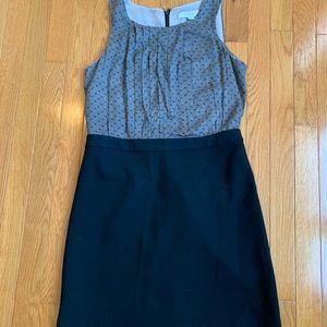Loft Black/Tan dress